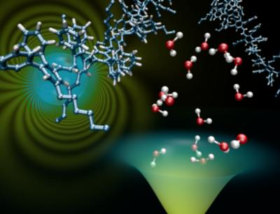Charges in organic semiconductors, trapped by oxygen and water molecules (MPI-P)