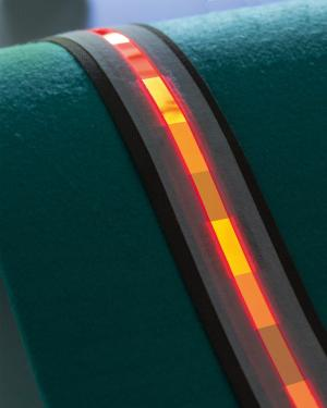 Fraunhofer OLED light strips photo