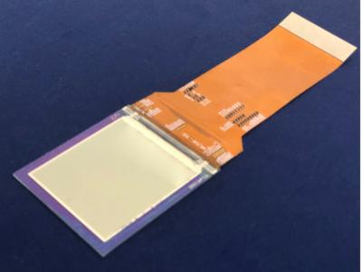 INT Tech 2.17-inch 2228 PPI OLED display prototype