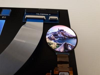 Innolux 1.4'' round flexible AMOLED photo