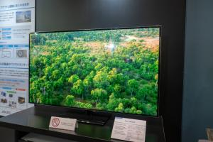 JOLED 55'' OLED TV prototype (FineTech Japan 2018)