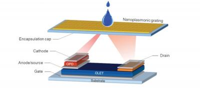 Optoplasmonic - OLET system (simplified structure)