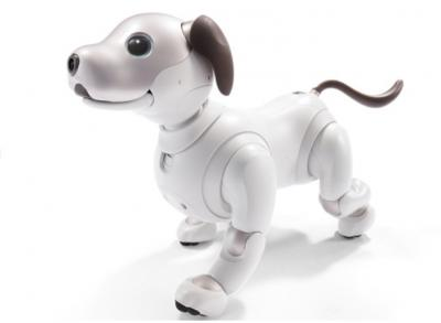 Sony Aibo 2017 photo