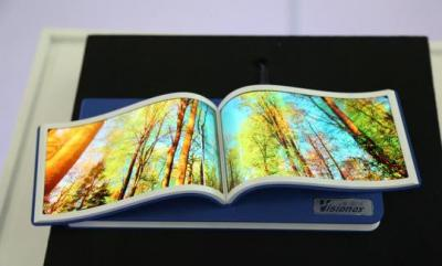 Visionox Flexible OLED prototype (November 2017)