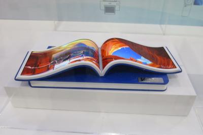 Visionox flexible e-book display prototypes (SID 2018)