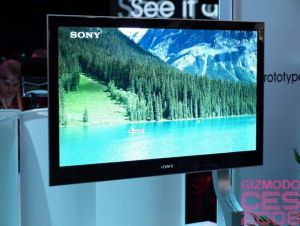 Sony OLED TV prototype