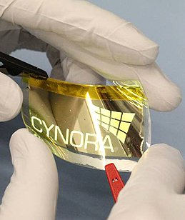 Cynora flexible OLED prototype photo