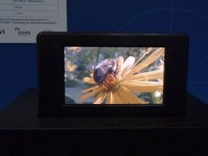 Dupont 4.3'' coated OLED prototype (SID 2011 photo)
