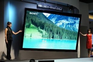 Sony FOOL 401 OLED TV photo