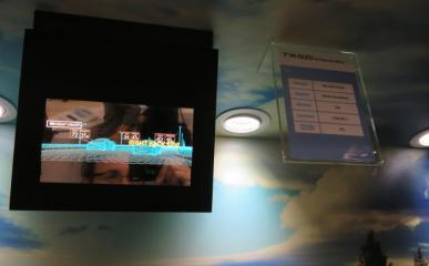 SDC 7'' mirror automotive OLED at SID 2016